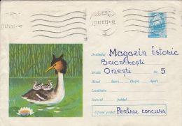 60761- CRESTED GREBE, BIRDS, COVER STATIONERY, 1973, ROMANIA