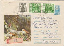 60774- PELICAN, BIRDS, REGISTERED COVER STATIONERY, 1971, ROMANIA