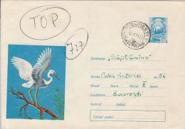 60782- LITTLE EGRET, BIRDS, COVER STATIONERY, 1973, ROMANIA