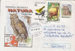 60786- EAGLE OWL, BIRDS, COVER STATIONERY, 1998, ROMANIA