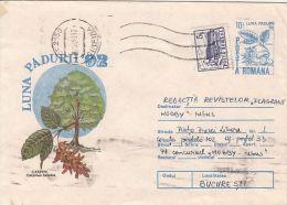 60792- COMMON HORNBEAM, TREE, COVER STATIONERY, 1993, ROMANIA