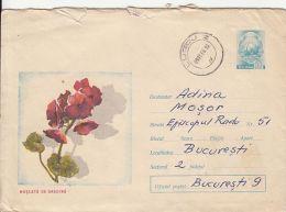 60796- GERANIUM, FLOWERS, COVER STATIONERY, 1968, ROMANIA