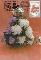 60809- CHRYSANTHEMMUMS, FLOWERS, MAXIMUM CARD, 1986, ROMANIA