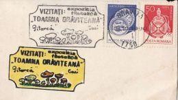 60832- MUSHROOMS, LILIPUT SPECIAL COVER, 1990, ROMANIA