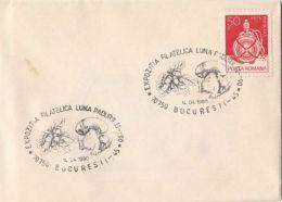 60833- MUSHROOMS, SPECIAL POSTMARK ON LILIPUT COVER, 1990, ROMANIA