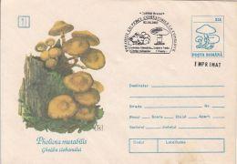 60836- MUSHROOMS, COVER STATIONERY, 2003, ROMANIA