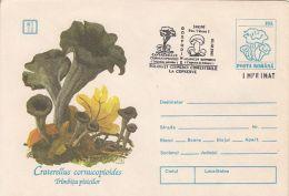 60837- MUSHROOMS, COVER STATIONERY, 2003, ROMANIA