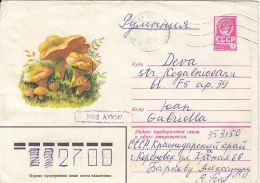60839- MUSHROOMS, COVER STATIONERY, 1980, RUSSIA-USSR