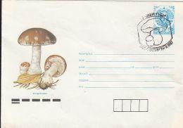 60841- MUSHROOMS, COVER STATIONERY, 1987, BULGARIA