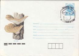 60842- MUSHROOMS, COVER STATIONERY, 1987, BULGARIA