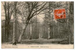 CPA   78  MARLY LE ROI    1911    ETOILE DE CROÜY      ALLEE DANS UN BOIS - Marly Le Roi
