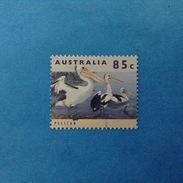 1994 AUSTRALIA FRANCOBOLLO USATO STAMP USED - FAUNA UCCELLI PELLICANO 85 C