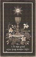 DP. PALMYRE DE JONGHE - LICHTERVELDE 1868-1889