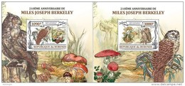 BURUNDI 2013 - Owls, Mushrooms. OFFICIAL Deluxe Sheets