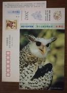 Bubo Nipalensis,Forest Eagle Owl,owlet Bird,China 2002 Rare Wildlife Animal Postal Stationery Card