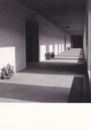Waasmunster Abdij O.L.Vr Van Roosenberg, Fotokaart (pk36404) - Waasmunster