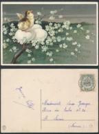 AO326 Carte Postale De Cul Des Sarts à St Servais 1909 - Cartas Commemorativas