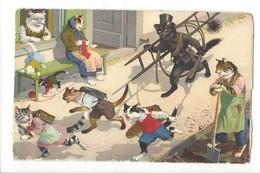16869 -  Chats Habillés Le Ramoneur Maman Chat Tricote Et Les élèves Se Sauvent N°4700 - Animaux Habillés