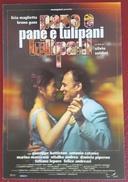 PANE E TULIPANI Film Licia Maglietta Bruno Ganz Silvio Soldini - Altri