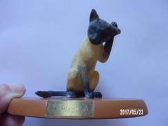 """Chat En Résine """"à Sa Toilette"""" - Katten"""
