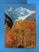 COURMAYEUR- Il Monte Bianco E L'Aiguille Noire De Pétéret -  Vedi Descrizione.  (F) - Italia
