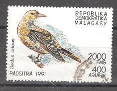 Madagascar, 1991 , Oiseau ORIOLE; 2000 F , Yvert N° 1030, Obl TB