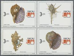 Thematik: Tiere-Meerestiere-Muscheln / Animals-sea Animals-shells: 1960/2000 (approx), Various Countries. Accumulation O