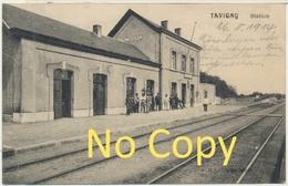 Tavigny  Belgique : La Station - Gare - Cachet Allemand : Feld Poststation N° 52 - Guerre De 14-18