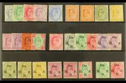 1902-11 FINE MINT KEVII COLLECTION  Presented On A Stock Card & Includes 1902-11 Set Of All Values To 1r....