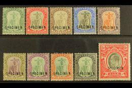 "1903  Ed VII Set Complete, Wmk CA, Overprinted ""Specimen"", SG 14s/23s, Very Fine Mint. (10 Stamps) For More..."