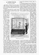 LA SCIENCE FORAINE ( LES ACROBATES PLONGEURS )   1882 - Sciences