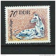 DDR-RDA - N° 1836 -  Dogue - *