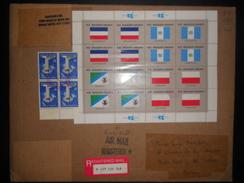 Nation Unis , Lettre Recommande De New York 1990 Pour Monaco , Affranchis Avec 2 Blocs