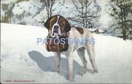 72747 SWITZERLAND DOG ST BERNARD POSTAL POSTCARD - Suisse
