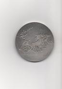 MEDAILLE  :  AEQUO ANIMO AD HONORES  -  QUARTA REGIO FESTINAT   -  ( Char Romain Avec Chevaux ) -  Bronze Avec Poinçon - Professionals/Firms