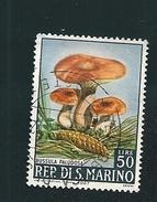 N° 702 Russula Paludosa TIMBRE San Marin (1967) Oblitéré 50 L - Saint-Marin