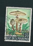 N° 700 CHAMPIGNON Lepiota Procera TIMBRE San Marin (1967) Oblitéré 20 L - Saint-Marin