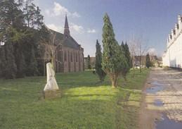 Dendermonde, Begijnhof, Begijnhofkerk  (pk36447) - Dendermonde