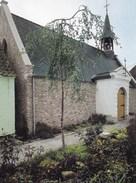 Dendermonde, Kapel 18e Eeuw St Onolfsdijk  (pk36451) - Dendermonde