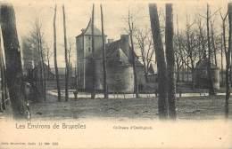 Gooik - Les Environs De Bruxelles - Nels Série 11 N° 202 - Le Château D' Oetinghen - Gooik
