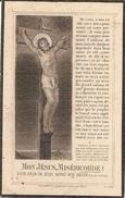 DP. PAUL VAN DER HAERT ° LOUVAIN 1875 - + BLANKENBERGHE 1925 -DIRECTEUR GIST&SPIRITUSFABRIEK