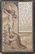 DP. LEANDER DE KOCK ° PITTHEM 1890 - + LICHTERVELDE 1903 - LEERLING H.BERCHMANSSCHOOL