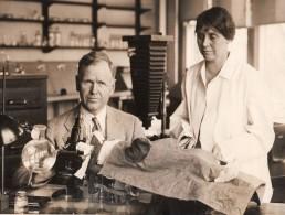 Philadelphie Recherche Medicale Docteur Eliot Clark Lapin Cellules Vivantes Ancienne Photo 1930 - Professions