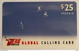 Three Birds - Bermuda