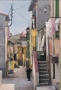 66----COLLIOURE--une Rue Pittoresque-- La Côte Vermeille---voir 2 Scans - Collioure