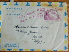 CONGO BELGE :TRES BEAU AEROGRAMME  OBLITERATION DE USUMBURA  DE 1959 VERS GENVAL