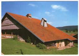 CPM   THUE  OU TUHE OU  TUYE       FERME FRANC COMTOISE - Farms