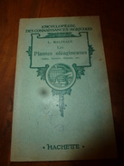 1946 Les Plantes Oléagineuses (colza, Navette , Oeuillette , Etc) Par L. Malpeaux - 2. Seeds