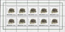 MOLDOVA 1995 Année Européenne Conservation Nature Faune , 3 Feuilles Mnh - Environment & Climate Protection