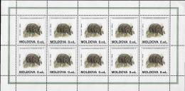 MOLDOVA 1995 Année Européenne Conservation Nature Faune , 3 Feuilles Mnh